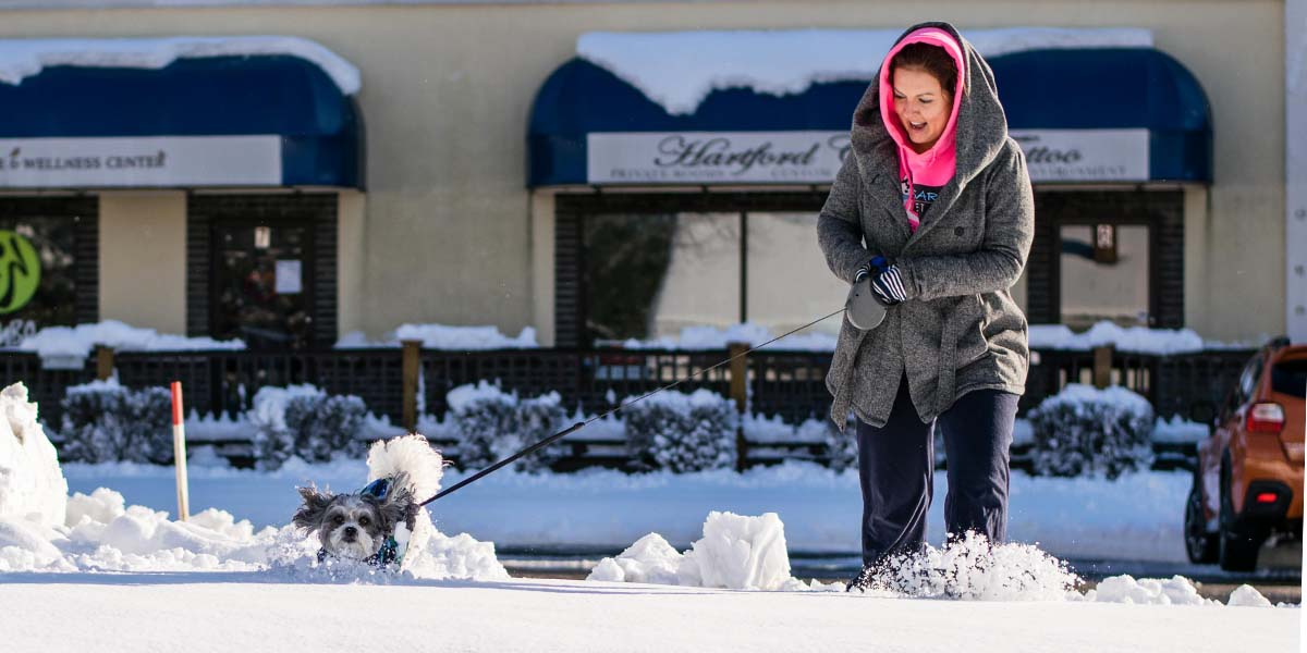 Pet Sitter Dog Walker Sarah in the snow with a dog