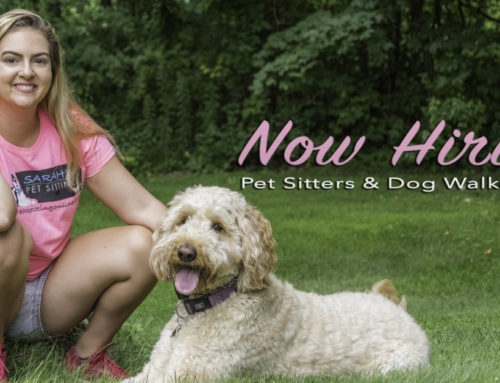 Why Sarah's Pet Sitting Hires Locally?