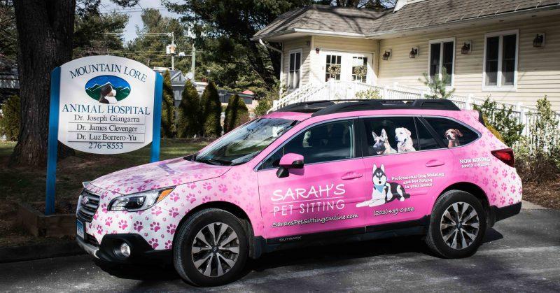 Pink Sarah's Pet Sitting Car