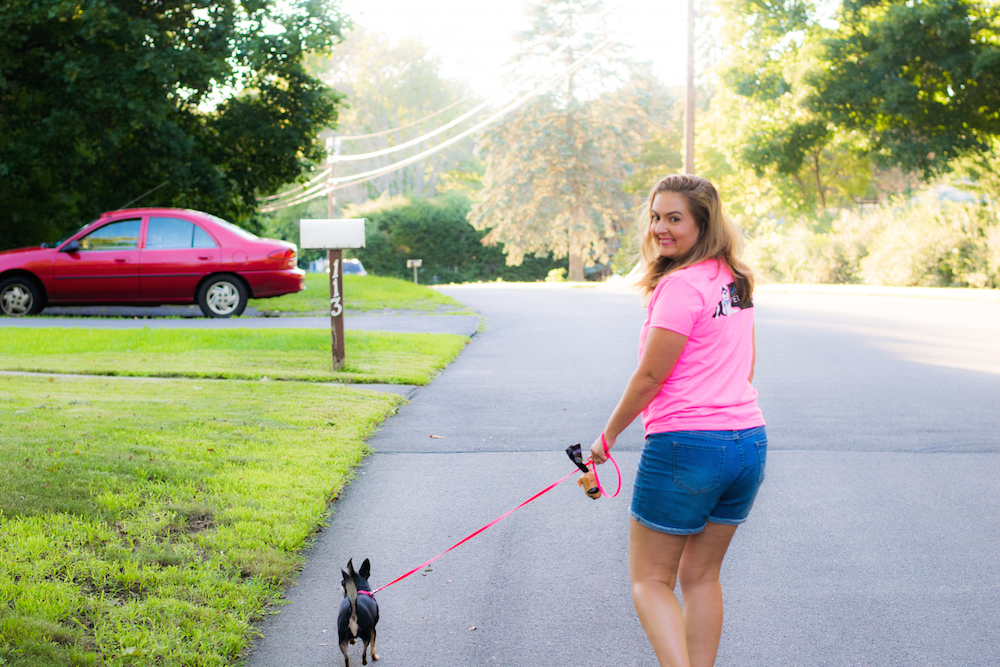 Sarah S Pet Sitting Of Cheshire Dog Walking And Dog
