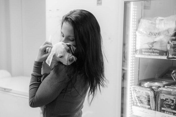 Sarah's Pet Sitting _ Thomaston Feed Cheshire