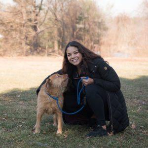 Dog Walker Cheshire CT